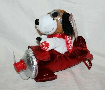 Snoopy Valentine Airplane